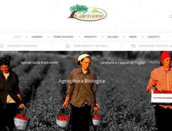 Creazione sito web E-commerce Azienda Agricola Calemone di Carovigno (Brindisi)